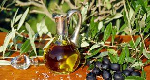 olivas aceite